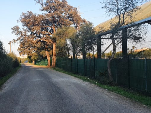 Instalación de vallados perimetrales del Club de la Motilla